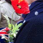 Poppy at Flag Day